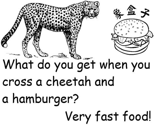 cheetah hamburger very fast food 獵豹 印度豹 動物 漢堡 速食