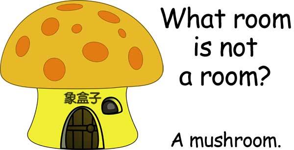 mushroom 香菇 蘑菇