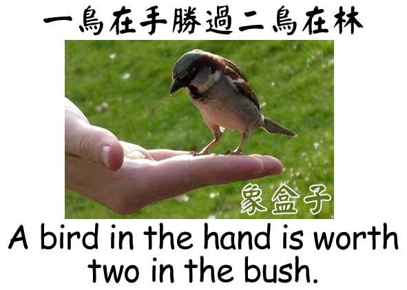 一鳥在手勝過二鳥在林