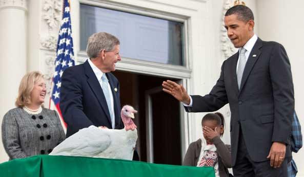 Thanksgiving White House pardon turkey