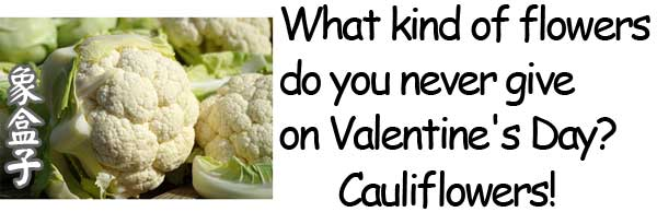 cauliflowers valentines day flowers