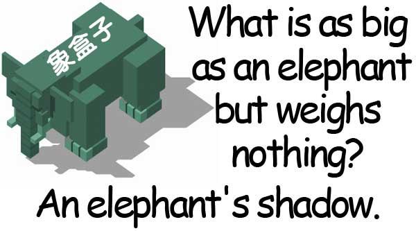 象 影子 elephant shadow