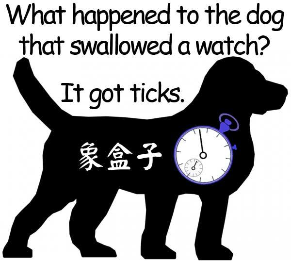 dog watch ticks 狗 鐘 錶 滴答聲 蝨