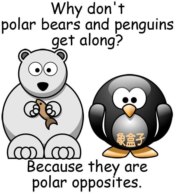 polar bears penguins polar opposites