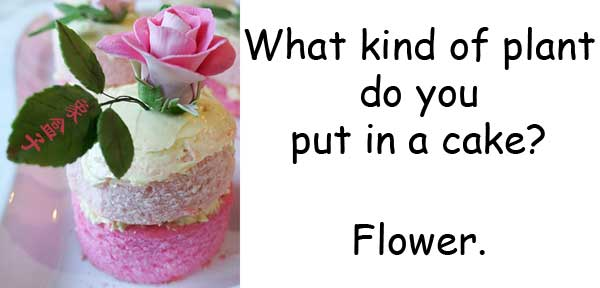 flour flower homophone