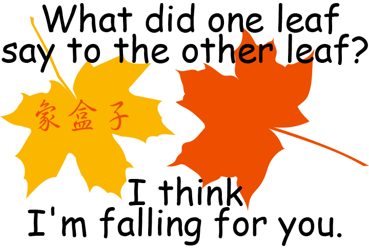 fall for you leaf leaves