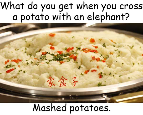 mashed potatoes 馬鈴薯泥 土豆泥