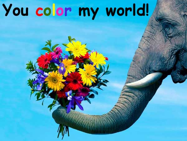 you color my world 你讓我的世界充滿色彩
