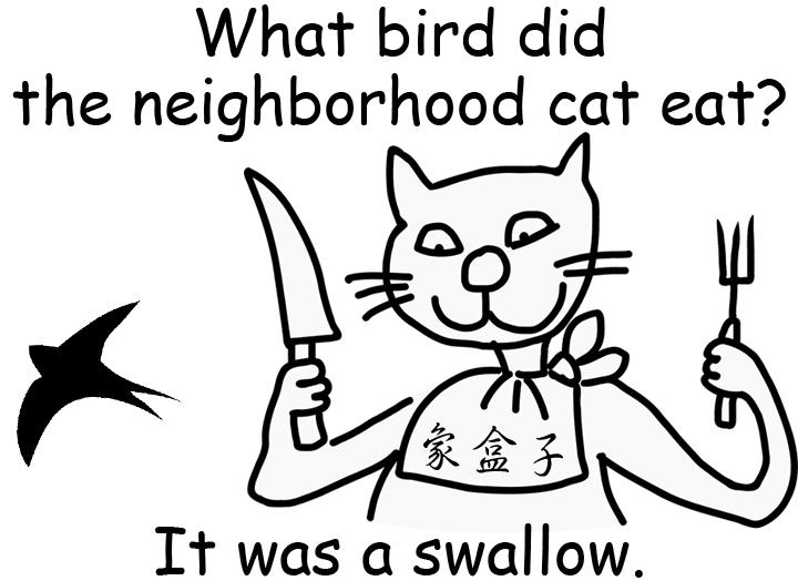 cat 貓 bird 小鳥 swallow 吞下 嚥下 燕子