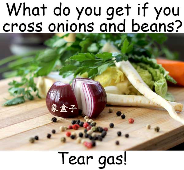 onions 洋蔥 beans 豆子 tear gas 催淚氣