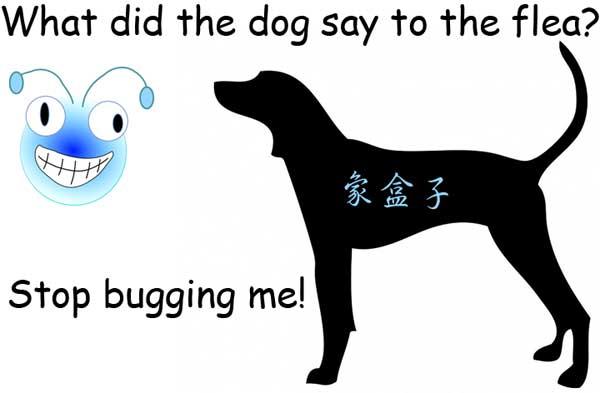 狗 跳蚤 別煩我 dog flea bug
