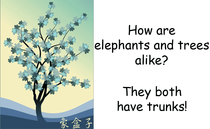 elephants trees trunks 大象 樹木 樹幹 汽車車尾的行李箱