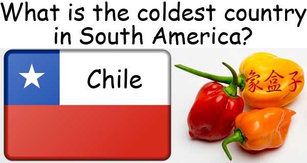 homonyms 同音異義字 chilly 冷颼颼的 chili chile 辣椒 紅番椒