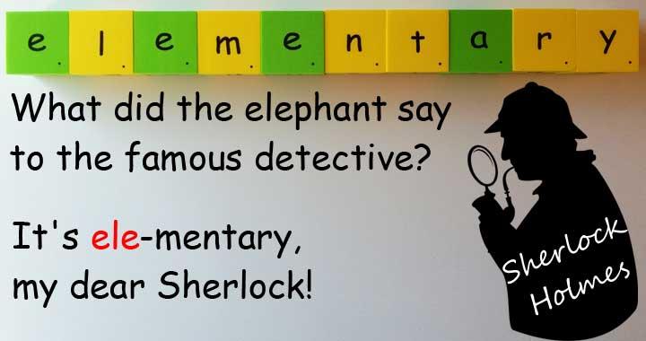 elephant 大象 elementary 基本的