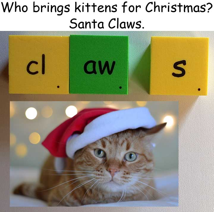 耶誕節 Christmas Xmas homophones 同音異義 claus clause claws  Santa Claus 耶誕老人 claw 爪子