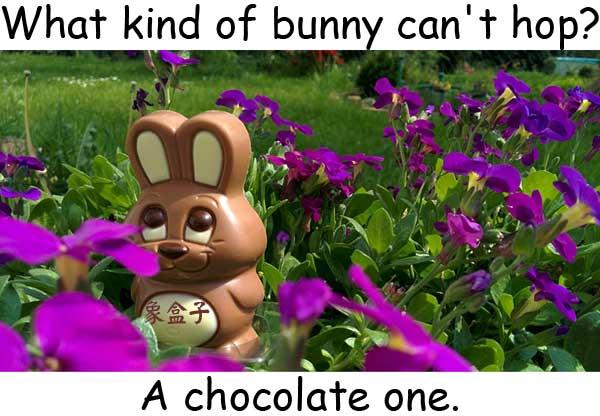 chocolate bunny rabbit 巧克力兔 hop 單腳跳 跳躍