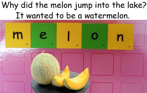 melon 瓜 甜瓜
