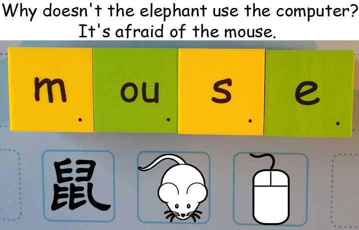 鼠 mouse computer mouse 滑鼠