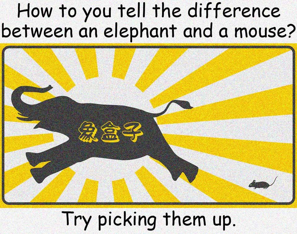 大象 elephant mouse 老鼠