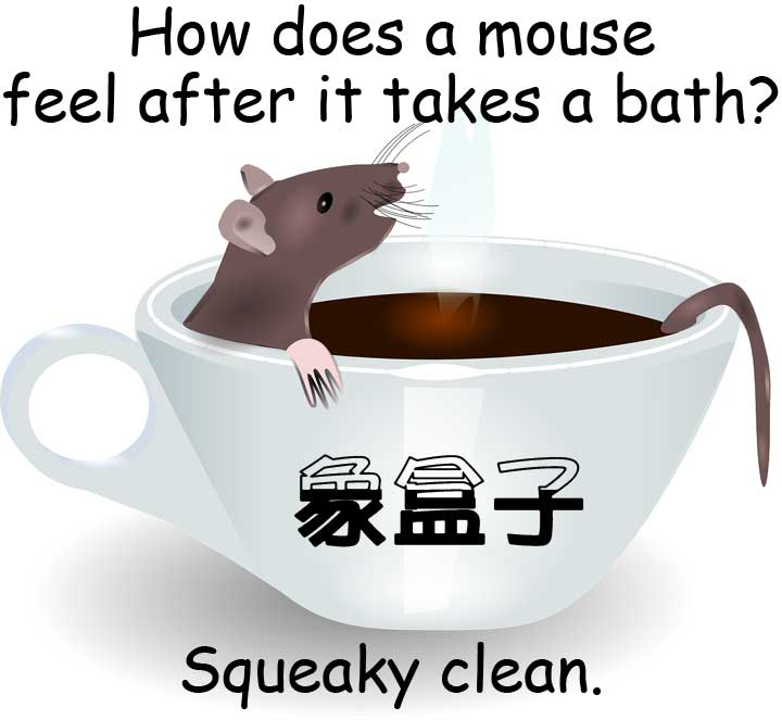 鼠 mouse squeaky clean 十分乾淨 idiom 成語