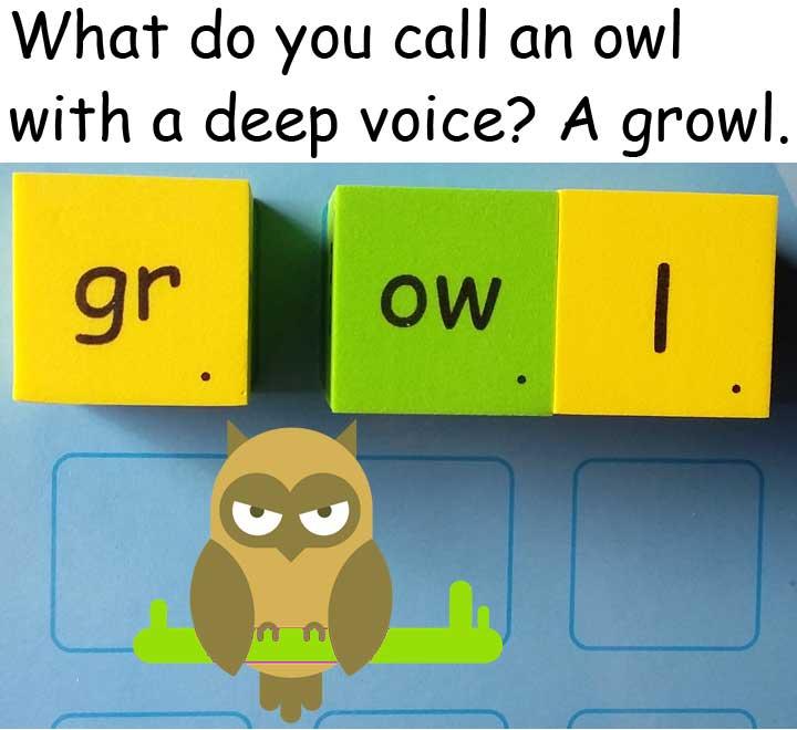 貓頭鷹 owl growl 低聲吼叫