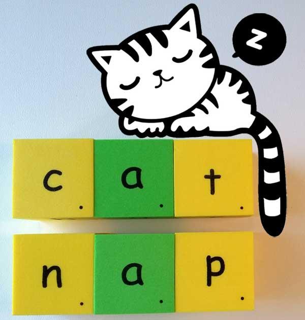 catnap 貓 打盹 小睡 打瞌睡