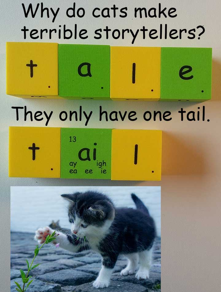 tail tale homophones 同音異義