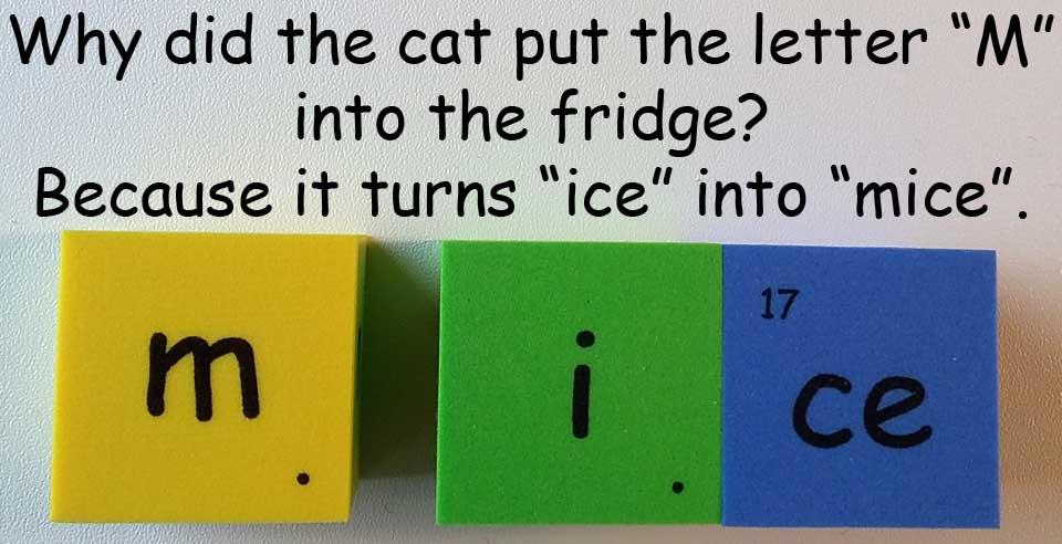 冰 ice mice 鼠 mouse cat 貓