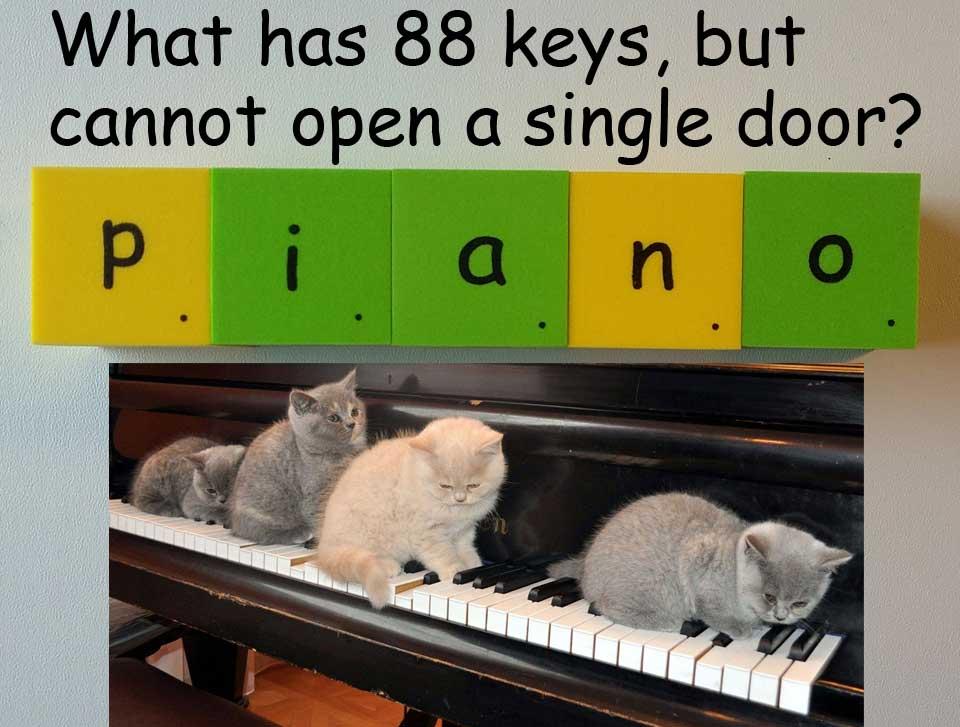 piano 鋼琴